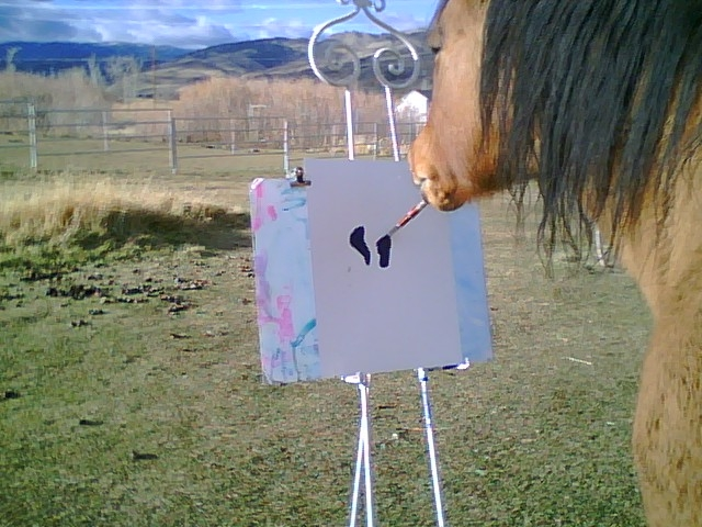 Cholla - The Artistisahorse